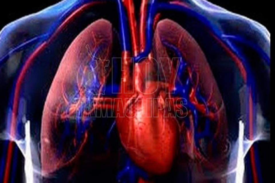 Luchan por la tuberculosis