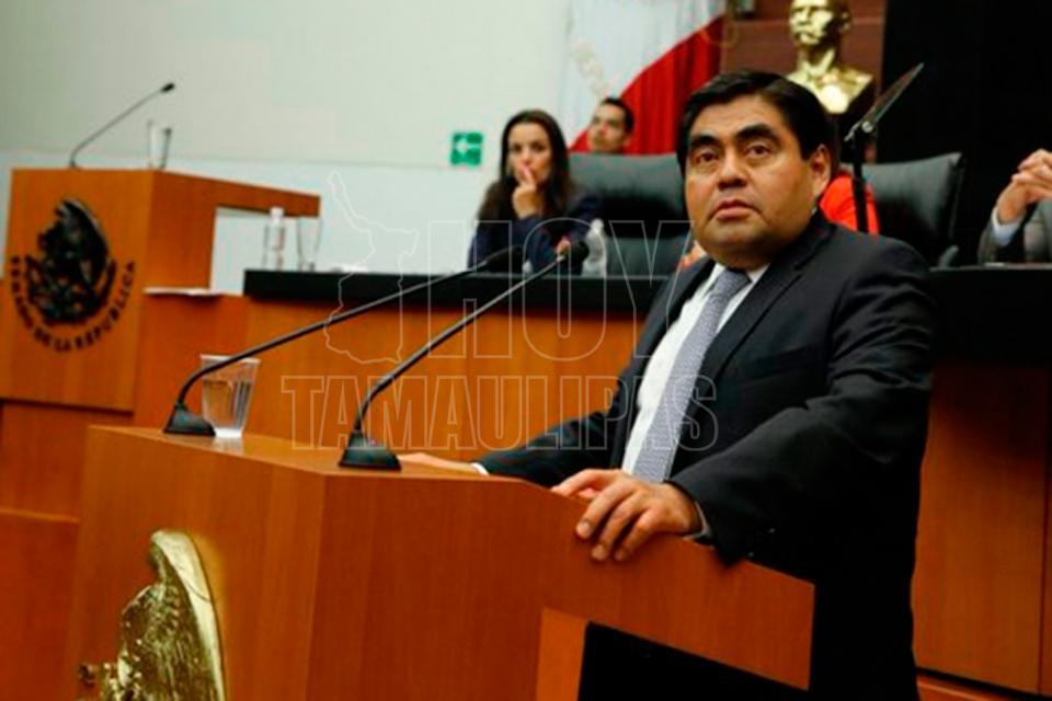 INE, sin facultad para investigar a diputada de Morena que recibió dinero