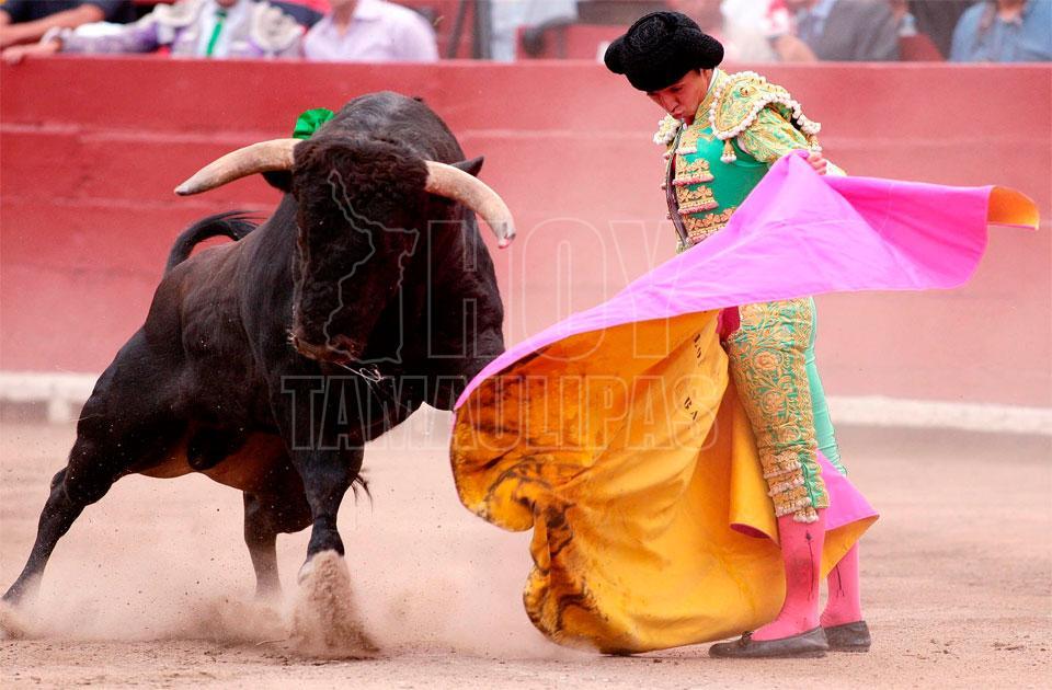 Aprueban ley que prohíbe herir y matar a toros en corridas — España