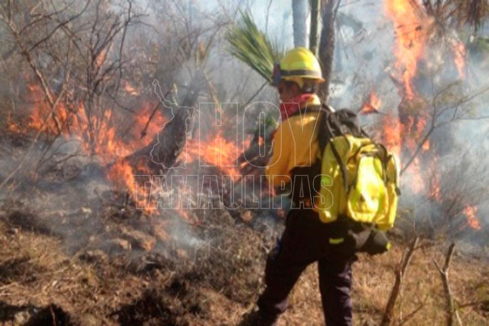 Incendios afectan a 9 municipios de Tamaulipas